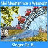 Mei Muatterl war a Weanerin by Singer Dr. B...