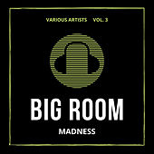 Big Room Madness, Vol. 3 by Various Artists