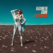 Aftermath de Elizabeth Cook