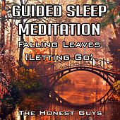 Guided Sleep Meditation: Falling Leaves (Letting Go) by The Honest Guys