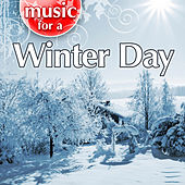 Music For A Winter Day von Weather Delight
