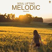 Soul Lifting Melodic Tracks de Various Artists