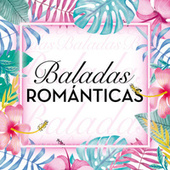 Baladas Románticas van Various Artists