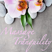 Massage Tranquility by Various Artists