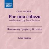 Por una cabeza (Arr. P. Breiner for Orchestra) de Razumovsky Symphony Orchestra