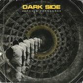 Dark Side de Zerky
