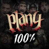 100% von Plan 4