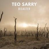 Disaster di Teo Sarry