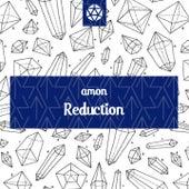 Reduction de Amon