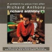 A Présent Tu Peux T'en Aller by Richard Anthony