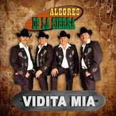 Vidita Mia by Los Alegres De La Sierra