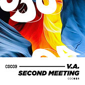 Second Meeting by Various Artists