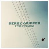 A Year of Swimming de Derek Gripper