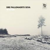 Winter von Dré Pallemaerts Seva