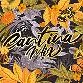 Cantina Mix de Various Artists
