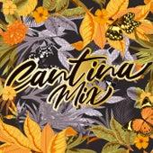 Cantina Mix by Various Artists