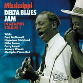 Mississippi Delta Blues Jam In Memphis de Various Artists