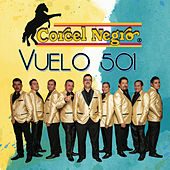VUELO 501 de Corcel Negro