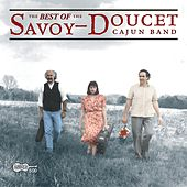The Best Of The Savoy-Doucet Cajun Band de Savoy-Doucet Cajun Band