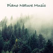 Piano Nature Music de Massage Tribe