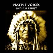 Meditation, Native Spirits de Sacred Spirit