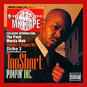 Pimpin Incorporated von Too Short