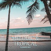 Melodic & Tropical Summer Mix by Various Artists