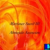 Ahmenite Ascension by Morttimer Snerd III