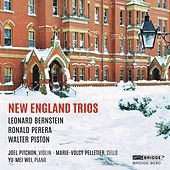 New England Trios by Joel Pitchon