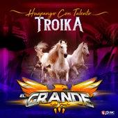 Troika (Huapango con Talento) de El Grande del Real