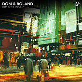 Lost in the Moment by Dom & Roland