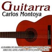 Guitarra Española by Carlos Montoya