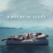 8 Hours of Sleep by Various Artists