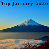 Top January 2020 de Various Artists