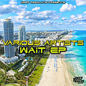 Wait EP by Various Artists