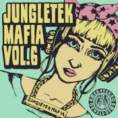 Jungletekmafia, Vol. 6 V.A by Various Artists