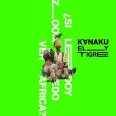 ¿Si Le Doy Zoom, Puedo Ver África? de Kanaku Y El Tigre