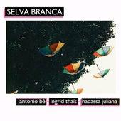 Selva Branca (Cover) by Ingrid Thaís Antonio Bê