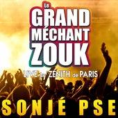 Le Grand Méchant Zouk : Sonjé PSE (Live) de Various Artists