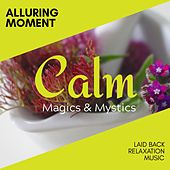 Alluring Moment - Laid Back Relaxation Music de Various Artists