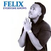 Everyone Knows de Felix (Rock)