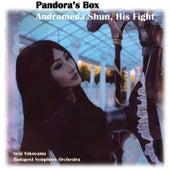 Pandora's Box, Andromeda Shun His Fight van Seiji Yokoyama