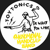Do What You Like von The Phenomenal Handclap Band