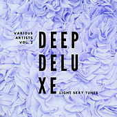 Deep Deluxe (Light Sexy Tunes), Vol. 2 by Various Artists