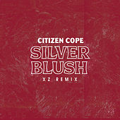 Silver Blush (XZ Remix) de Citizen Cope