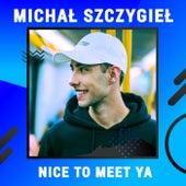 Nice To Meet Ya (Digster Spotlight) van Michał Szczygieł