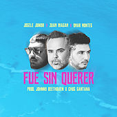 Fue Sin Querer by Josele Junior