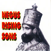 Negus Rising Sons de Various Artists