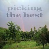 Picking The Best (Deep Cool House Music) de Various Artists