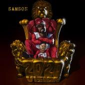20/20 Vision de Samson